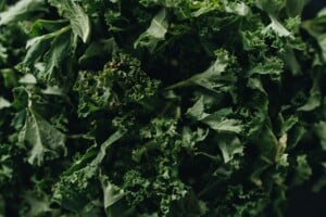 How to Love Your Leafy Greens | Spiro Health & Wellness